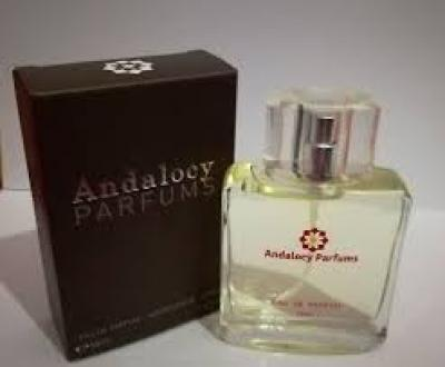 Andalocy