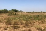 Terrain agricole 1,800 hectares mbour